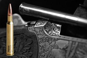 Jaguar Geschosse & Munition